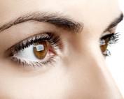Qué es el nervio óptico y cómo funciona