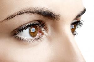 nervio-optico-copia
